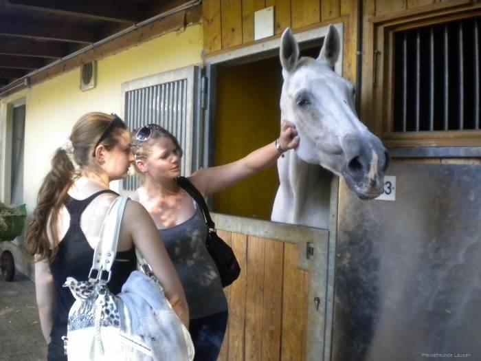 pferdefreunde_lausen_my_nchen_2011_009