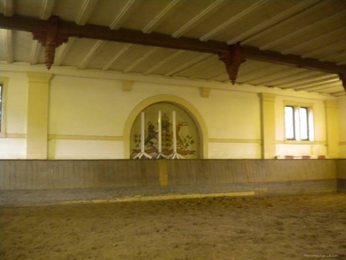 pferdefreunde_lausen_my_nchen_2011_049
