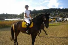 pferdefreunde_lausen_my_nchen_2011_059